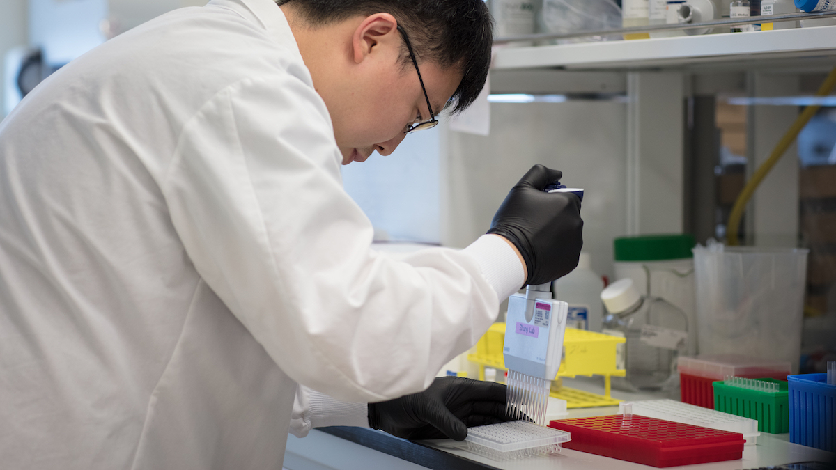 Creative Promise Prizewinner Feng Zhang running tests