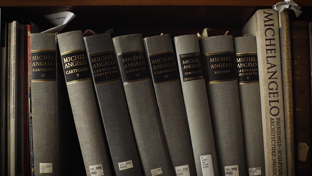 An array of books about Michelangelo on a bookshelf.
