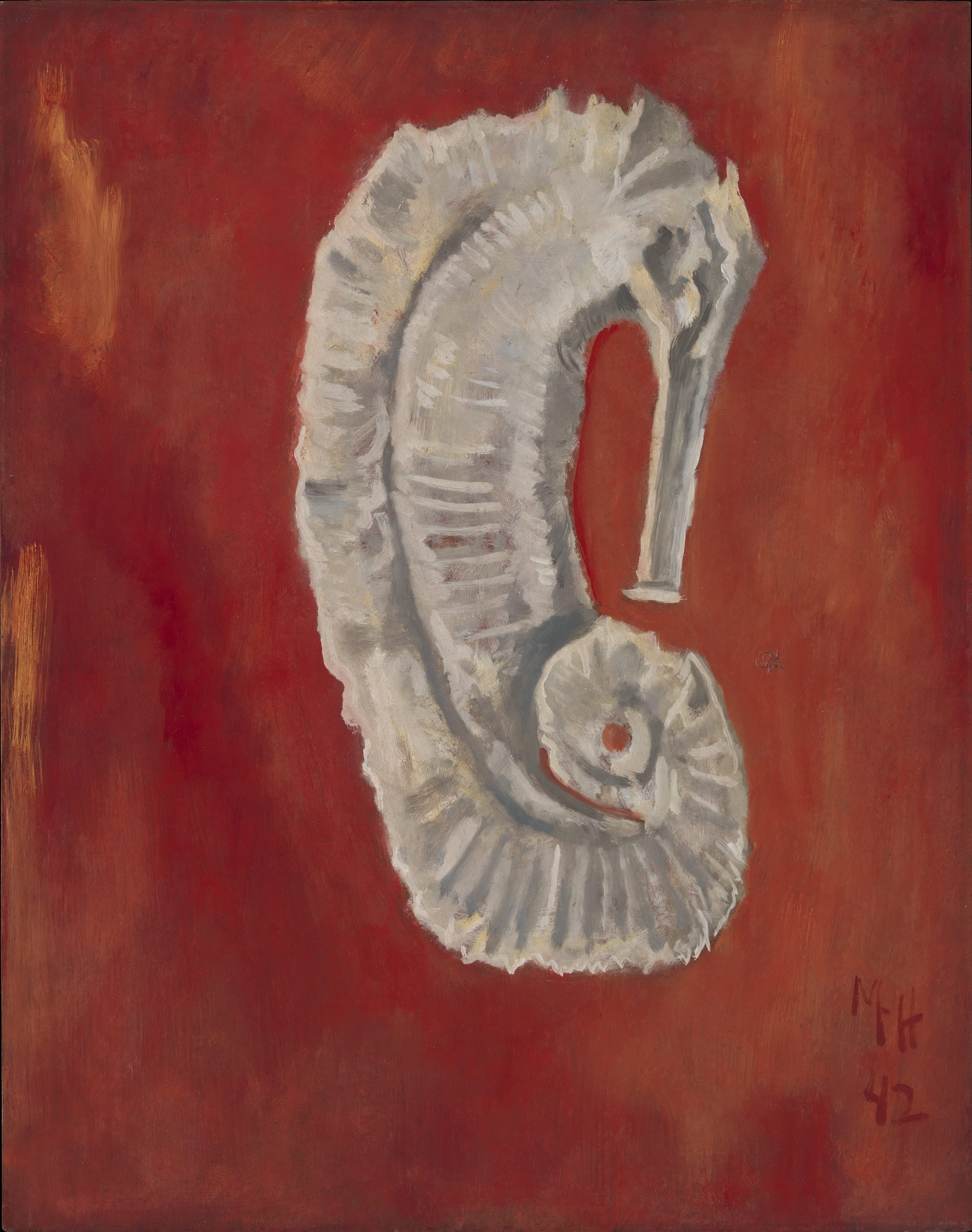 A white sea horse centered on a red background.