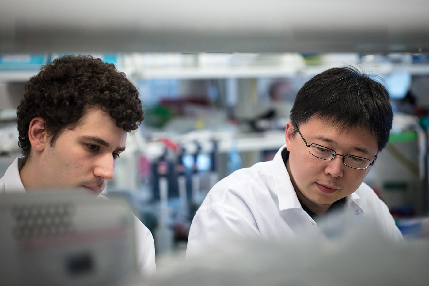 Feng Zhang with a student in his lab at Massachusetts Institute of Technology