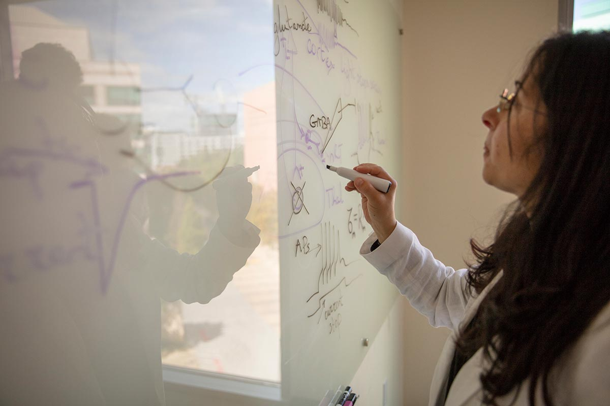 Jeanne T. Paz at a white board in her office