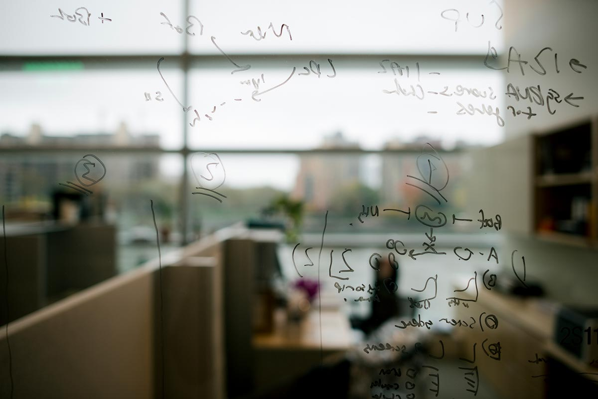 Scientific equations appear on all walls of Kivanc Birsoy's office at Rockefeller University