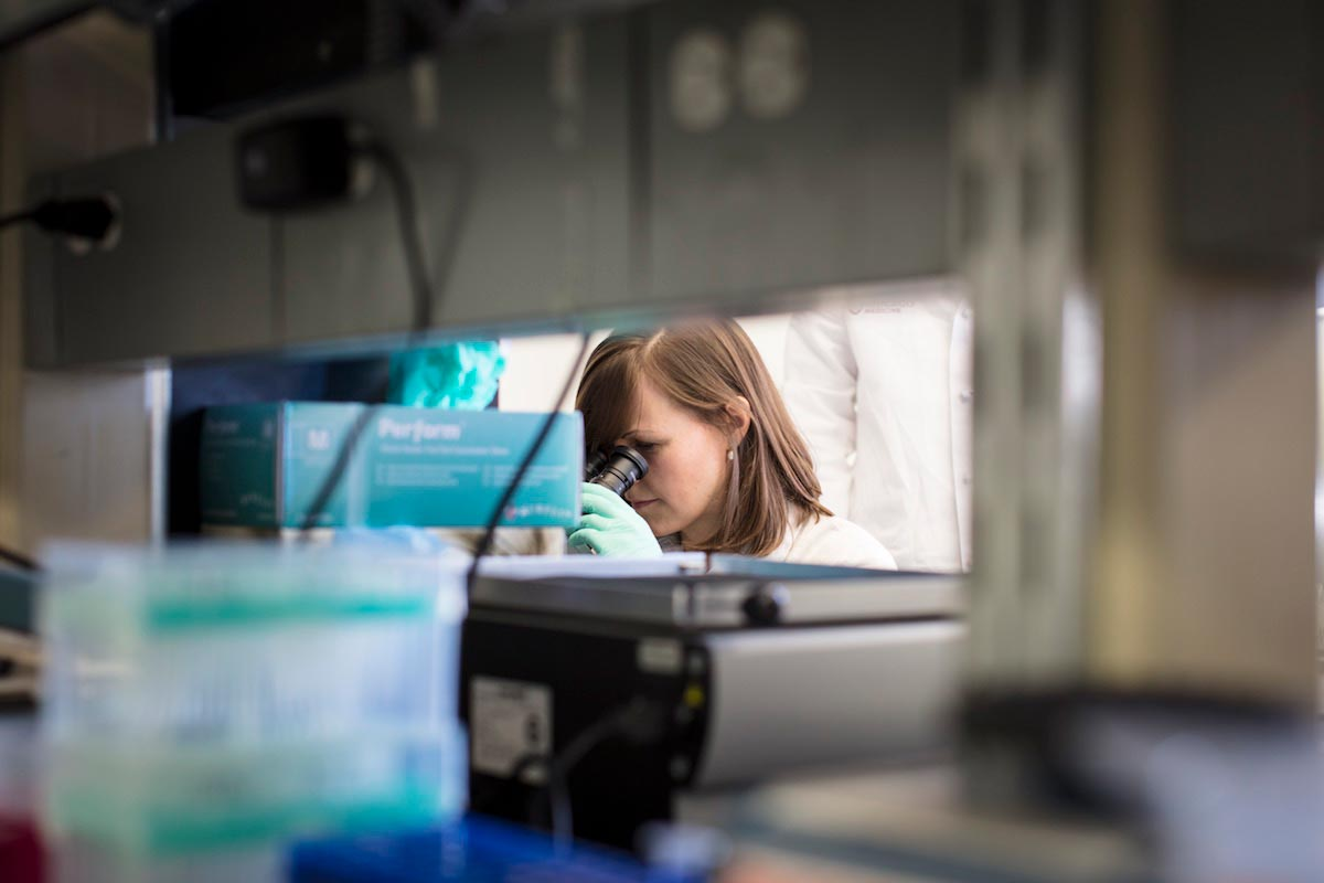 Michaela Gack is seen looking into a microscope through a gap made by the shelves in the lab.